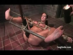 Trina michaels hogtied waxed